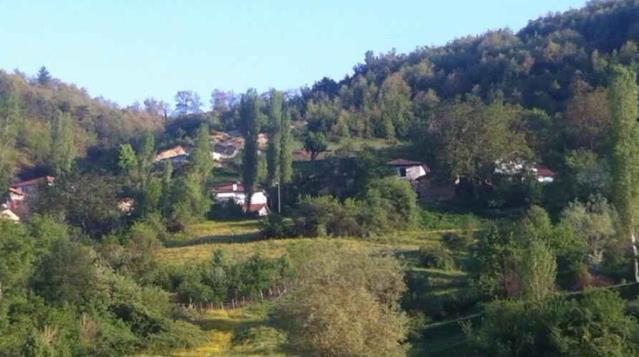 Kırmızı Amasya'nın 'mavi' köyü! Koronavirüs bu köye hiç uğramadı, başarının sırrı iki tedbirde